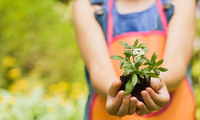 Relación con la naturaleza: 5 consejos para acercar a tus hijos con el medio ambiente