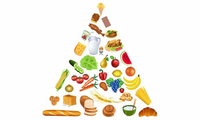 Cómo construimos la minuta de alimentación en Vitamina