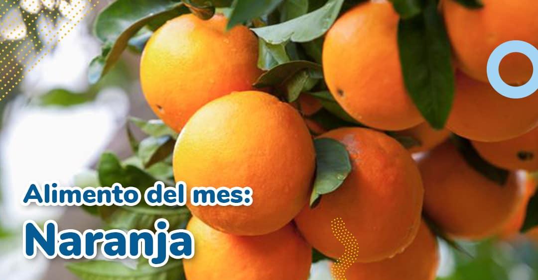 Alimento del mes: Naranja